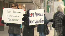 Humane Education Network fur protest