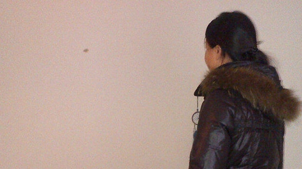 Kate Cheng looks at the hole left behind in her apartment after a shot was fired through it from a neighbour's apartment.