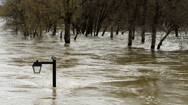 A lamp post is almost completely submerged in the overflowing Assiniboine River near the 18th Street Bridge in Brandon, Man., Wednesday, May 11, 2011. (David Lipnowski / THE CANADIAN PRESS)