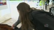CTV Winnipeg: Zoo celebrates Red Panda Day