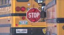 Many drivers fail to stop for school buses