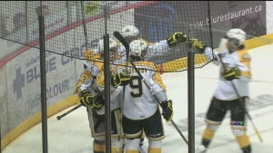 The Wheat Kings are the fourth and final team to qualify for the Memorial Cup, which begins May 20 in Red Deer, Alta. (File image)