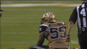 Defensive end Westerman, who was a high-priced free agent, was second in the league in quarterback sacks with 17. (File)