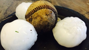 Hail stones from the Aug. 28, 2015 storm in Manitoba, south of Altona. (Photo from Clara Dyck)