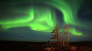 Northern lights over Churchill. Photo by Catherine deMeulles.