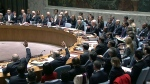 CTV National News: Canada's push for a UN seat