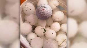 Golf and Hail at Hudgson, Manitoba. Photo by Janaya Hamrlik.