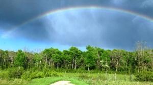 Somewhere over the rainbow. Photo by Treena.