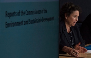Commissioner of the Environment and Sustainable Development Julie Gelfand prepares her papers before speaking with the media following the tabling of spring reports Tuesday May 31, 2016 in Ottawa. (THE CANADIAN PRESS/Adrian Wyld)