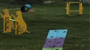 The park features 11 agility-testing stations for dogs and their owners to master. (Source: Barry Piasta)