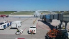 NewLeaf's first flight landed in Winnipeg on Monday, July 25. (Source: Dan Timmerman/ CTV Winnipeg)