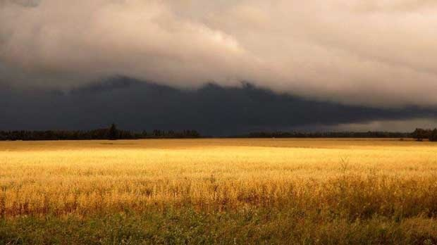 Storm clouds in Arborg. Photo by Rose Horvat.