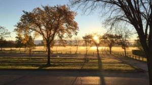 Today's sun up in Transcona and ground fog