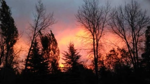 Front seat view of a beautiful sunrise. Photo by Susan Sydor.