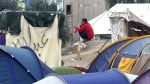 CTV National News: Refugee camp purge in France