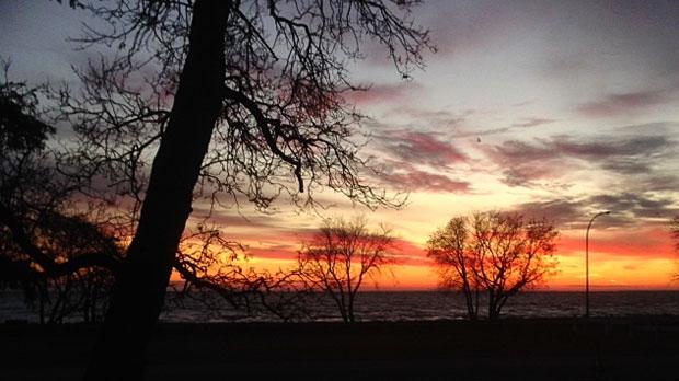 Fall colours of Lake Winnipeg. Photo by Linda Gillis.