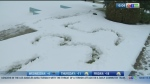 Winter storms into Winnipeg: CTV Morning Live News