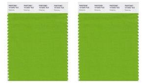 Pantone colour swatch called 'greenery', which has been named as the color of the year for 2017 by the Pantone Color Institute. (Pantone via AP)