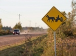 A horse and buggy road sign is seen in Summerville, P.E.I., on Saturday, Oct. 8, 2016. Over the past year, eastern Prince Edward Island has become a bit of an Amish paradise, and Islanders are welcoming the new settlers with open arms. (THE CANADIAN PRESS/Andrew Vaughan)