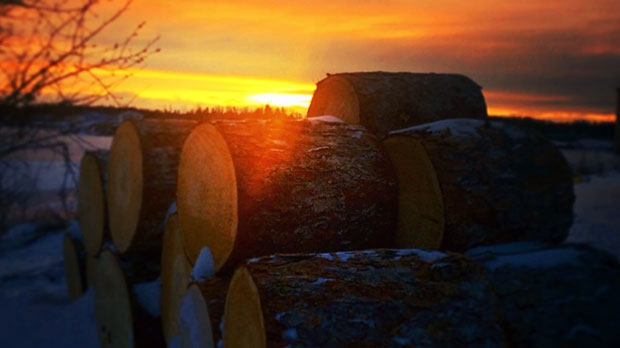 Stay warm Manitoba. Photo by April Semple.