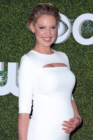 In this Aug. 10, 2016, file photo, Katherine Heigl arrives at the Summer TCA CBS, CW, Showtime Party at Pacific Design Center in West Hollywood, Calif. (Photo by Rich Fury/Invision/AP, File)