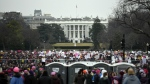 Protesters attending the Women's March on Washington can be seen from the South Lawn of the White House on the first day of President Donald Trump's administration, in Washington on Saturday, Jan. 21, 2017. (AP / Andrew Harnik)