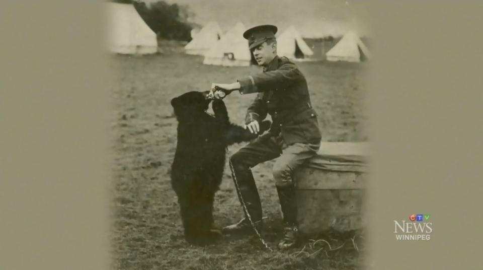 Winnie si beruang
