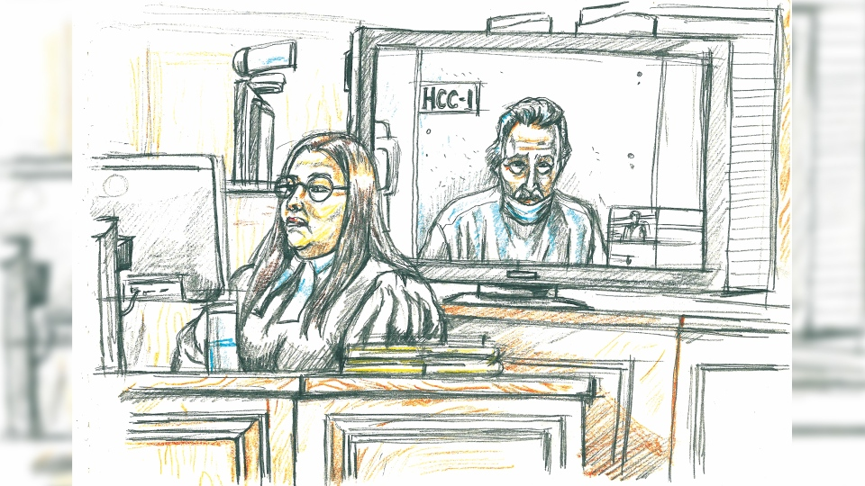 Peter Nygard court sketch