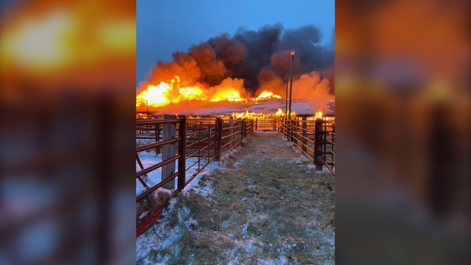 Pipestone Livestock Market fire, March 1