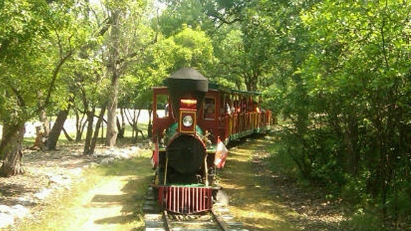The steam train's owner says ridership has dropped by more than 50 per cent this summer at the Assiniboine Park in Winnipeg