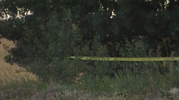 RCMP taped off a portion of this wooded area near Highway 9 and Highway 4.