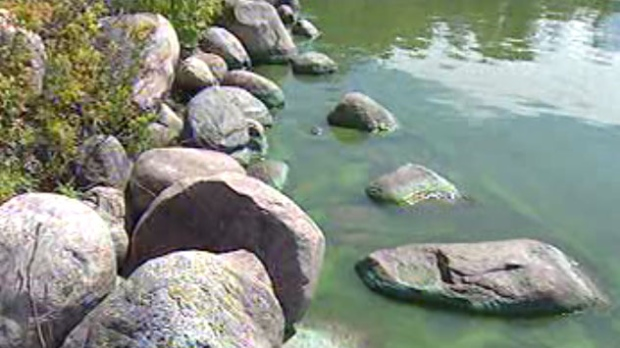Algae is seen in a Manitoba waterway. (file image)