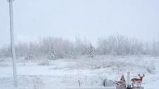 Snow in Vita